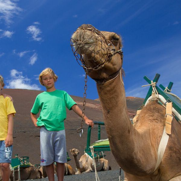 10 things to do with kids in Lanzarote